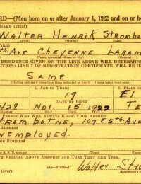 Military Service Registration Card - Henrik Strombotne